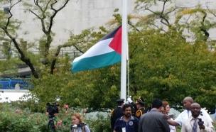 דגל פלסטין יונף באתונה? (צילום: אודי סגל)