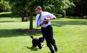 ברק אובמה משחק פוטבול עם הכלב בו על מדשאת הבית הלבן, 2009 (צילום: אימג'בנק/GettyImages)