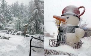 סערה: שלג בצפון, יירד גם בי-ם? (צילום: חדשות 2)