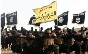 """כלי הנשק של דאע""""ש (צילום: המדיה החברתית של דאע""""ש)"""