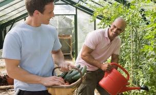 אוכל אורגני - שני גברים בגינה