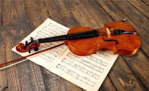 כינור (צילום: shutterstock)