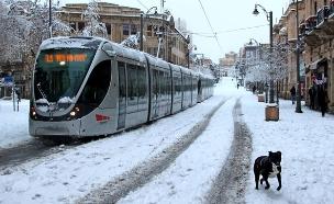 האם גם תושבי הבירה ייזכו לשלג? (צילום: מאור תורג'מן)