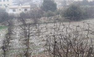שלג הבוקר בחברון