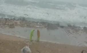 מנקים, חוף ים, סערה (צילום: חדשות 2)