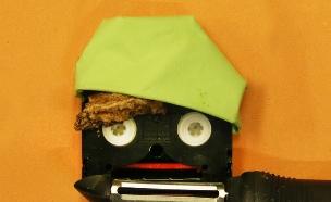 שי חי: קסטה, מפית, עוגה, קולפן (צילום: רחלי רוטנר ,mako)