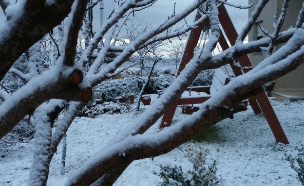 השלג באזור בנימין, החודש (צילום: דוברות מטה בנימין)