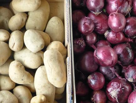 תפוחי אדמה ובצל לפאי רועים (צילום: מיכל לויט ,אוכל טוב)