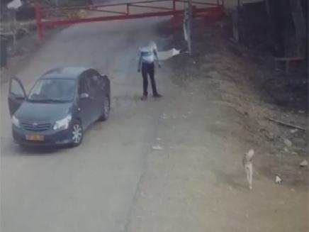 תיעוד: נטש את הכלב - ונמלט (צילום: תנו לחיות לחיות)