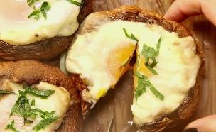 ביצה בקן של פטריות (צילום: מאקו ,מאקו)