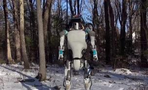 רובוט (צילום: חדשות 2)