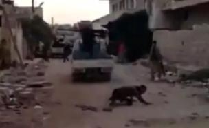 """לוחם דאע""""ש נופל (צילום: צילום מסך מתוך הסרטון)"""