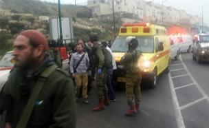 זירת הפיגוע בקריית ארבע, הבוקר (צילום: משה בוטוביה/ TPS)