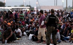 מהגרים מנסים לעלות על רכבת בהונגריה (צילום: חדשות 2)