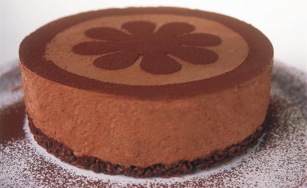 עוגת מוס שוקולד דבש של קרין גורן (צילום: דניאל לילה ,100 העוגות הטובות של על השולחן)
