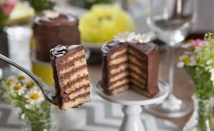 עוגת פנקייק כשרה לפסח (צילום: דרור עינב ,אוכל טוב)