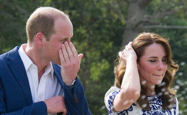 הנסיך וויליאם  (צילום: getty images)