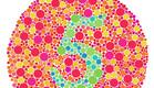 עיוורון צבעים (צילום: shutterstock: vadim kozlovsky)