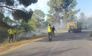 שריפה ביער ביריה בגליל העליון (צילום: ירון לוי יערן גליל עליון ומנהל האירוע מטעם קק״ל)