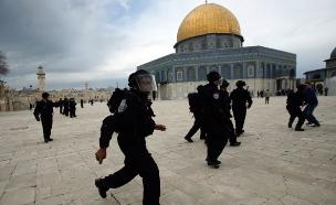 כוחות הביטחון בהר הבית (צילום: רויטרס)
