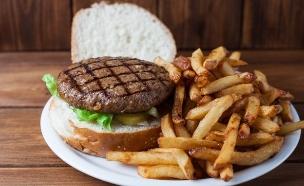 המבורגר רגיל (צילום: איציק בראל ושי טלבי)