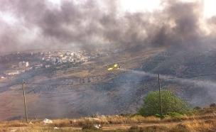השריפה בנגוהות, הבוקר (צילום: דניאל גלעד/TPS)
