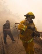 כותרות העבר: גל שריפות בכל הארץ (צילום: רויטרס)