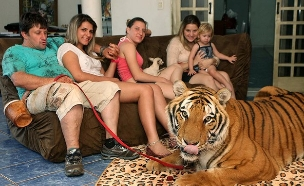 המשפחה הברזילאית שגרה עם נמרים (צילום: הסאן ,מעריב לנוער)