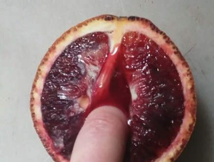 הפרי האסור: אינסטגרם חשבה שהתפוז הזה גס מדי