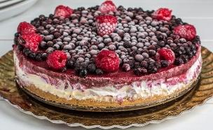 עוגת גבינה טבעונית (צילום: אלונה להב ,אוכל טוב)
