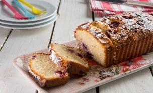 עוגת קוקוס ופטל (צילום: דרור עינב ,אוכל טוב)