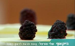 קינוחי החג של הרצל ושלי 01 (צילום: מתוך בייקאוף ישראל ,שידורי קשת)