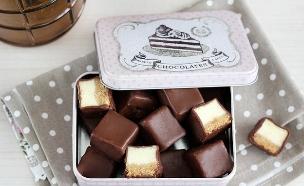 קוביות עוגת גבינה בציפוי שוקולד (צילום: ענבל לביא ,אוכל טוב)