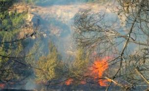 שריפה במבשרת ציון (צילום: חדשות 2)