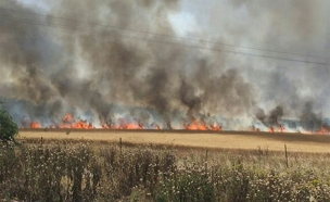 אחת מהשריפות ליד לוזית (צילום: כבאות ירושלים)