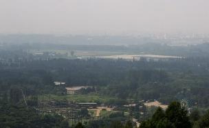 צפון קוריאה ביזאר (צילום: reddit)