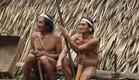 שבט הווארנים (צילום: אייל אלקבץ)
