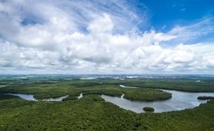 נהר האמזונס (צילום: Gustavo Frazao, Shutterstock)