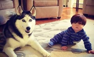 תינוק וכלב שעירים ביחד (צילום: פייסבוק)