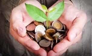 יד מחזיקה מטבעות ששתיל צומח מתוכן (אילוסטרציה: shutterstock ,shutterstock)