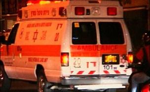 תאונת פגע וברח קשה בנגב (צילום: חדשות2)