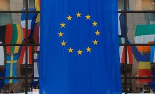 """תמיכה באיו""""ש - בפרלמנט האירופי (צילום: רויטרס)"""
