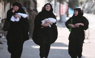שחרור העיר מאנביג, סוריה, דאעש, מורדים (צילום: חדשות 2)