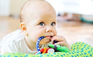 תינוק ונשכן (צילום: shutterstock ,shutterstock)