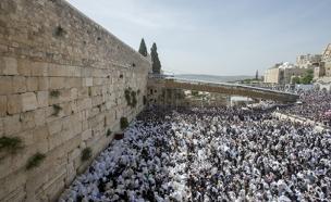 כותל, הכותל המערבי, דתיים, חרדים, מתפללים (צילום: חדשות 2)