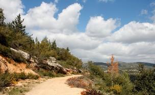 הרי ירושלים (צילום: slavapolo, Shutterstock)