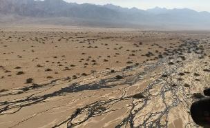 אסון הנפט בערבה, ארכיון (צילום: המשרד להגנת הסביבה)