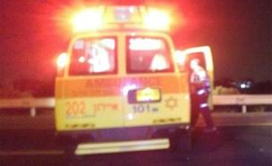 גבר נדקר בקטטה באשדוד, מצבו קשה (צילום: חדשות 2)