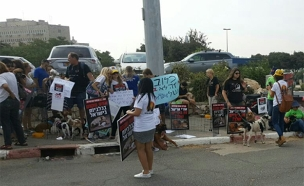 הפגנה מול משרד ראש הממשלה (צילום: חדשות 2)