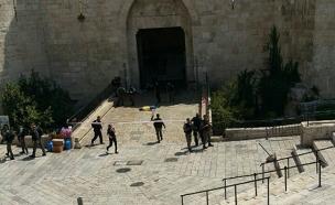 """זירת ניסיון הפיגוע בשער שכם (צילום: צב""""מ)"""